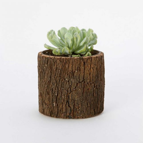 Terrain Planter Pot